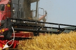 Зерноуборочный комбайн КЗС-812 ДЕСНА-ПОЛЕСЬЕ GS812